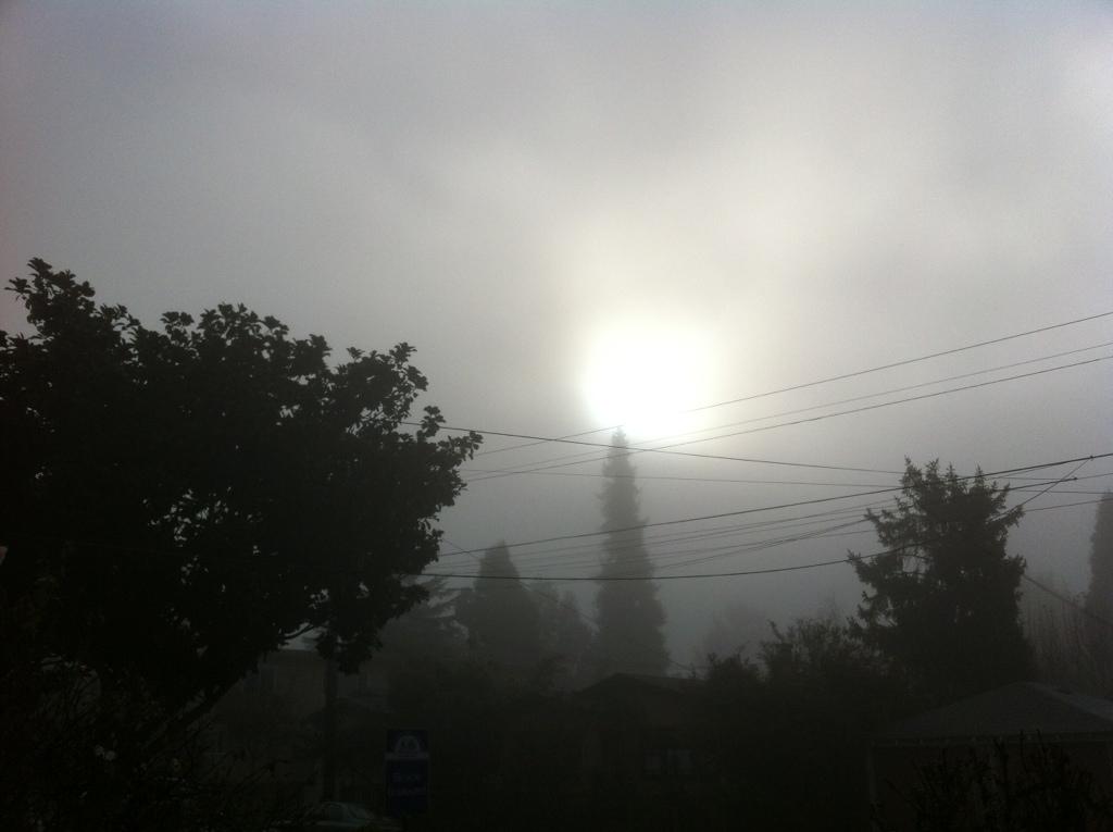 20120127-091136.jpg
